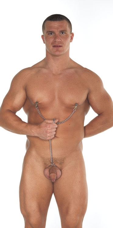 Nipple clamps with chain and cockring 50mm