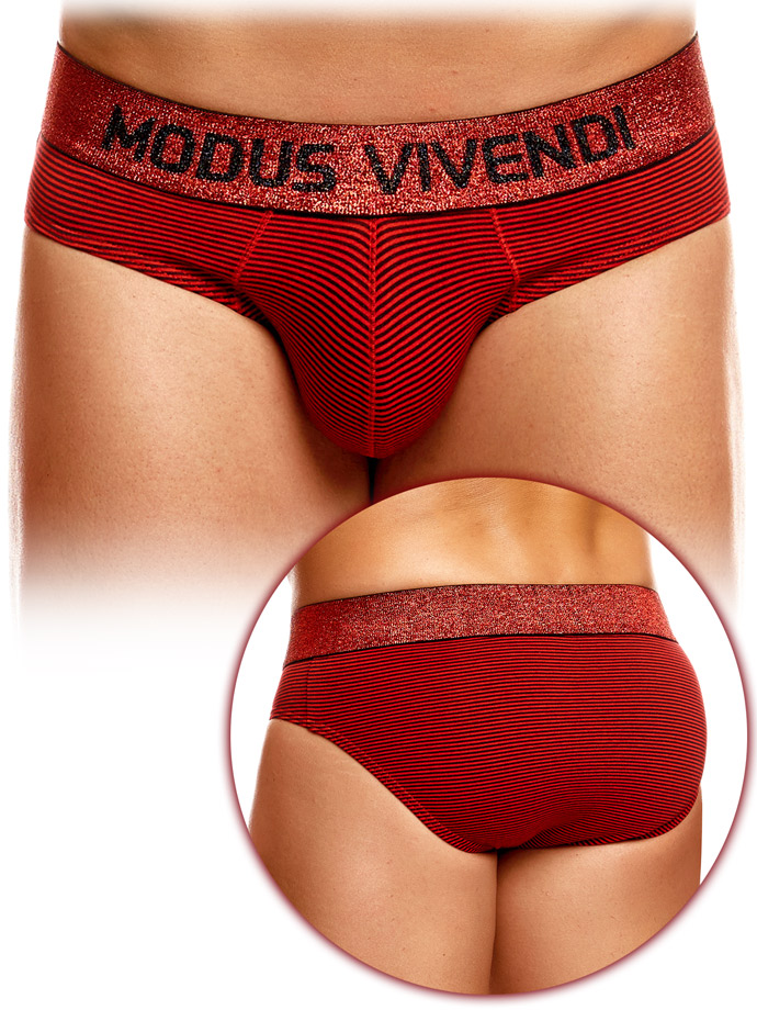 Modus Vivendi - Exclusive Brief - Striped